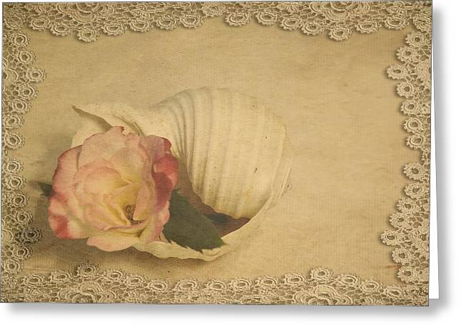 Soft Light Greeting Cards - Whisper Of A Rose Greeting Card by Jan Amiss Photography