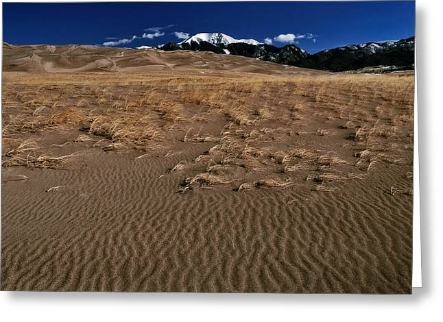 Jeka World Photography Greeting Cards - Whispering Sands Greeting Card by Jeff Rose