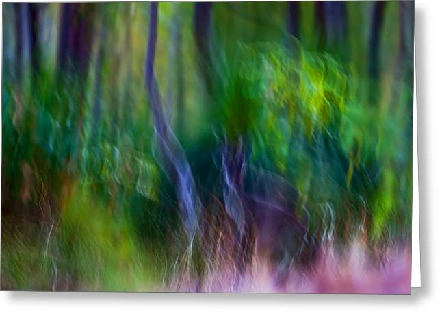 Michelle Wrighton Greeting Cards - Whispers on the Wind Greeting Card by Michelle Wrighton