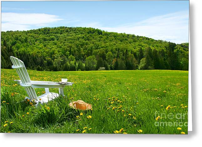 Adirondack Greeting Cards - White adirondack chair in a field of tall grass Greeting Card by Sandra Cunningham
