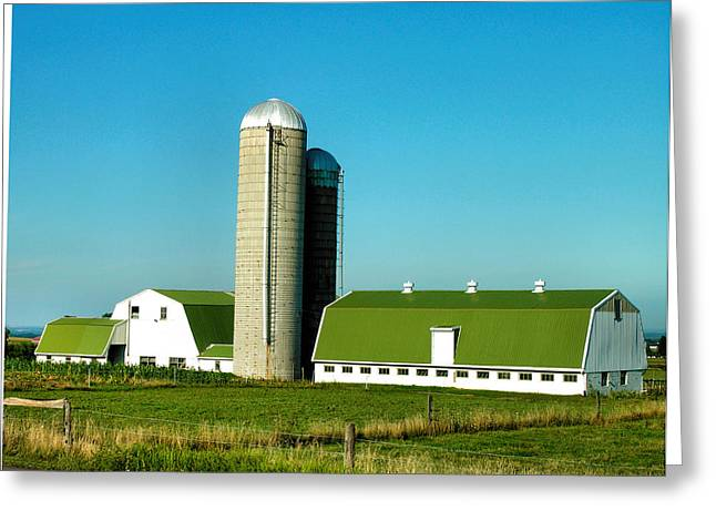 Pasture Framed Prints Greeting Cards - White And Green Barns Greeting Card by Steven Ainsworth