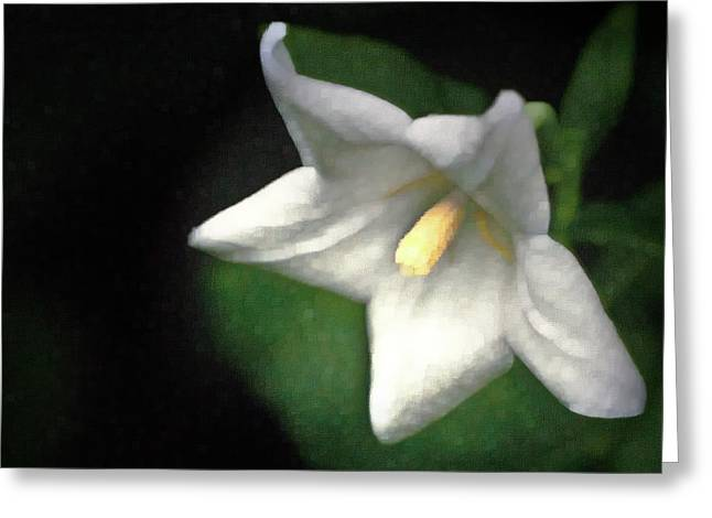 Balloon Flower Greeting Cards - White Balloon Flower-Faux Painting Greeting Card by  Onyonet  Photo Studios
