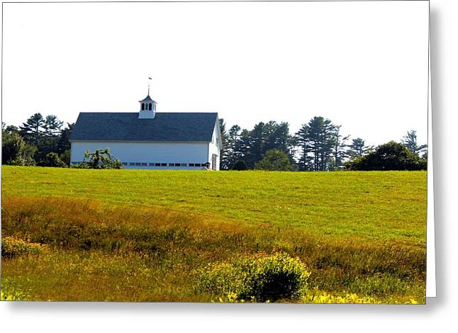White Barn Greeting Card by Robbie Basquez