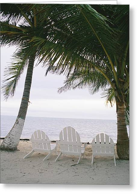 Benches And Chairs Greeting Cards - White Beach Chairs Line The Shore Greeting Card by Stephen Alvarez