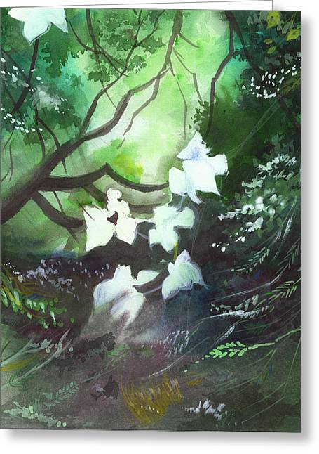 Unique View Paintings Greeting Cards - White Begonia Greeting Card by Anil Nene