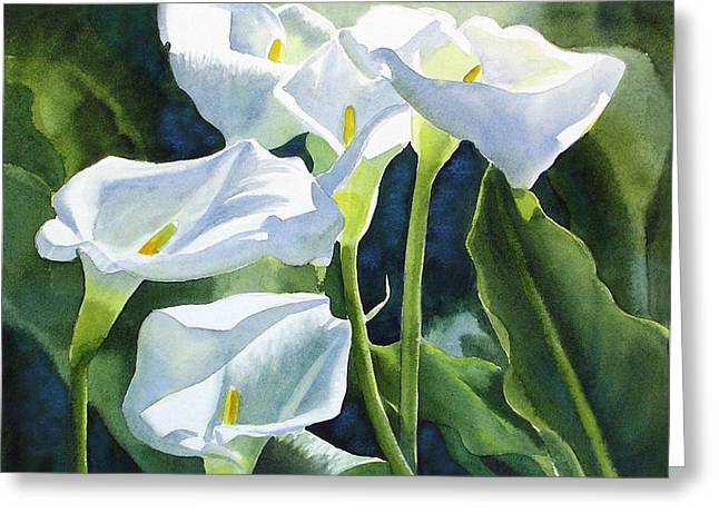 White Calla Lilies Greeting Card by Sharon Freeman