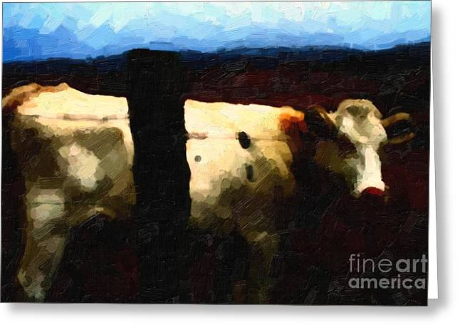 White Cow Behind Fence At Night Greeting Card by Wingsdomain Art and Photography