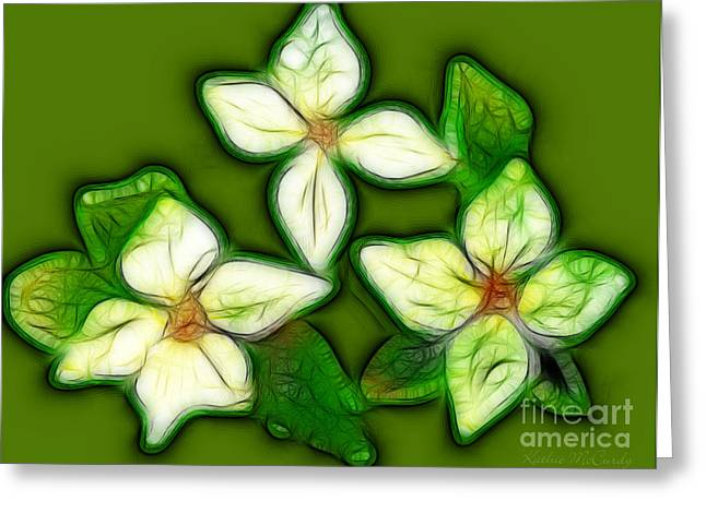 White Dogwood Greeting Card by Kathie McCurdy