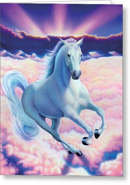 Chris Hiett Greeting Cards - White Dream Horse Greeting Card by MGL Studio - Chris Hiett