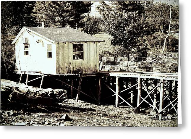 Shack Greeting Cards - White Fishing Shack Maine Greeting Card by Elizabeth Thomas