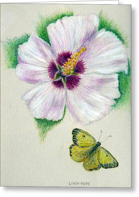 Linda Pope Greeting Cards - White flower Greeting Card by Linda Pope