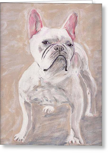 Arthur Rice Greeting Cards - White Frenchie Greeting Card by Arthur Rice
