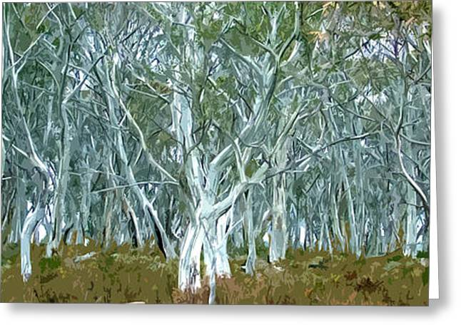 Roadway Digital Art Greeting Cards - White Gum Forest Greeting Card by Phill Petrovic