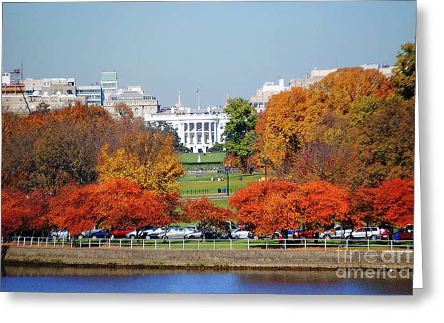 Michelle Obama Photographs Greeting Cards - White House Foliage Greeting Card by Jost Houk