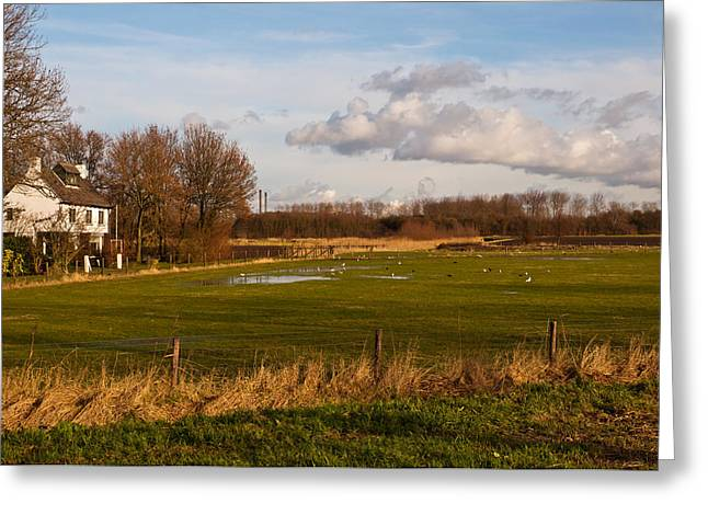 Moerdijk Greeting Cards - White house on the edge of a meadow with puddles Greeting Card by Ruud Morijn