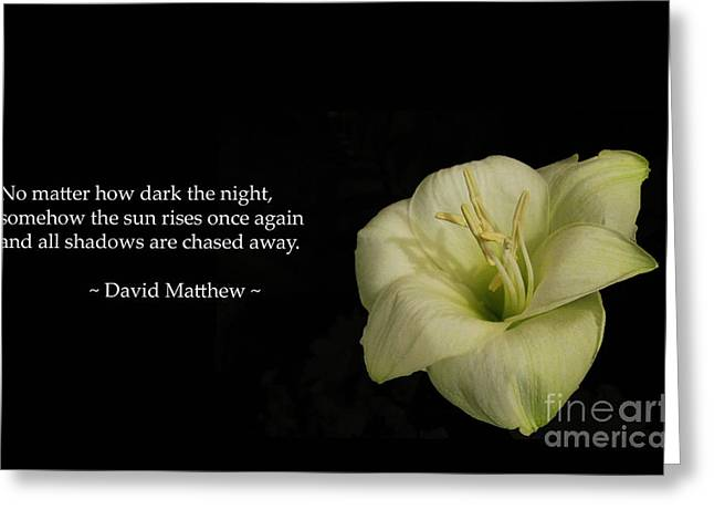 Universal Mother Greeting Cards - White Lily In The Dark Inspirational Greeting Card by Ausra Paulauskaite
