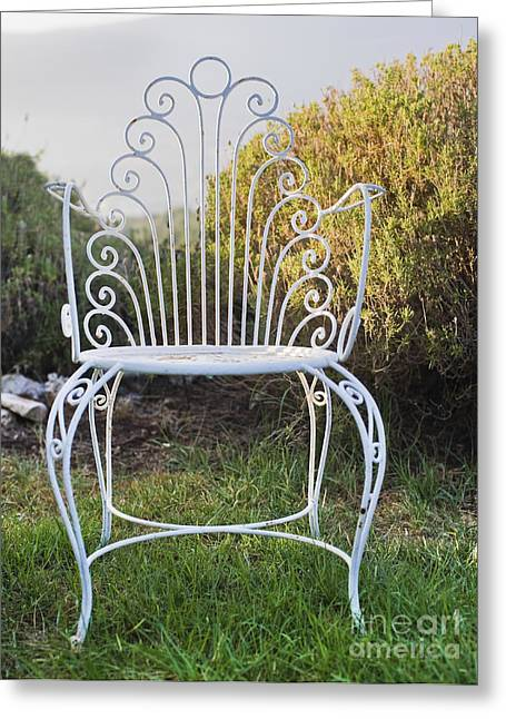 Lawn Chair Greeting Cards - White Metal Garden Chair Greeting Card by Noam Armonn