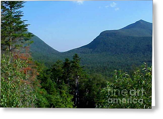 Insects Greeting Cards - White Mountains Greeting Card by John From CNY