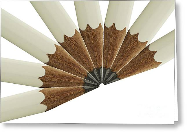 White Pencil Fan Greeting Card by Blink Images