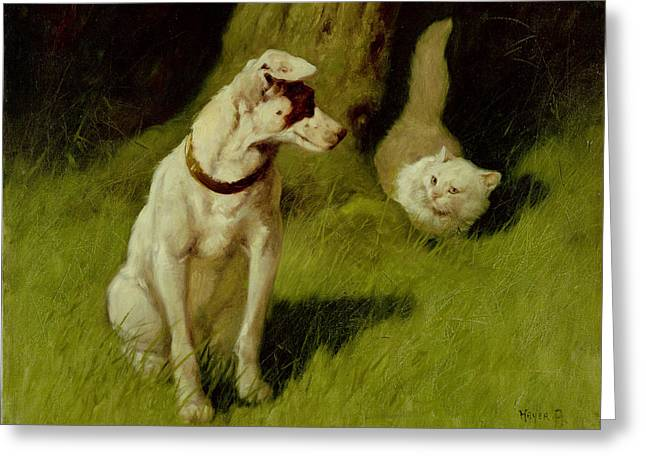 Vs Greeting Cards - White Persian Cat and Jack Russell Greeting Card by Arthur Heyer