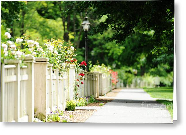 Main Street Greeting Cards - White Picket Fence And Roses Greeting Card by HD Connelly