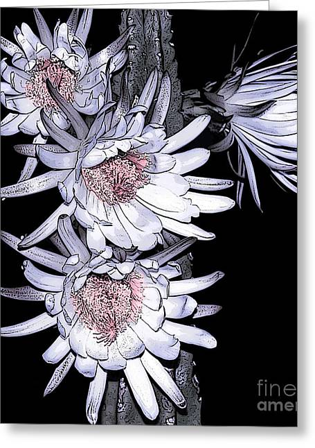 White Pink Cereus Flowers - Digital Art Greeting Card by Dolores Root