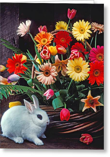 Hare Photographs Greeting Cards - White rabbit by basket of flowers Greeting Card by Garry Gay