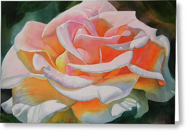 Orange Rose Greeting Cards - White Rose with Orange Glow Greeting Card by Sharon Freeman