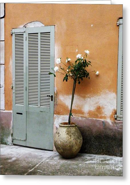 Lainie Wrightson Greeting Cards - White Roses at Front Door Greeting Card by Lainie Wrightson