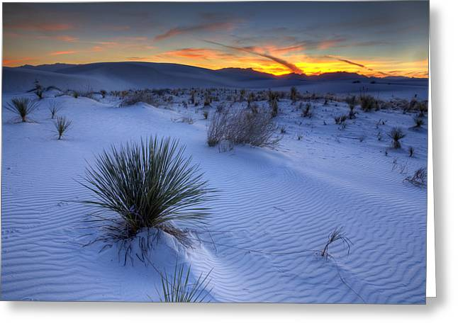 Deserts Greeting Cards - White Sands Sunset Greeting Card by Peter Tellone