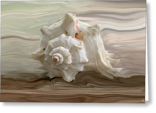 Shell Art Greeting Cards - White shell Greeting Card by Linda Sannuti