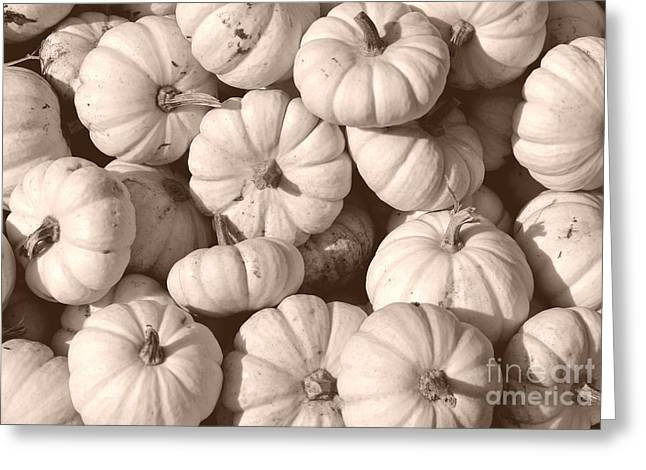 Farm Stand Greeting Cards - White Squash Greeting Card by Kevin Fortier