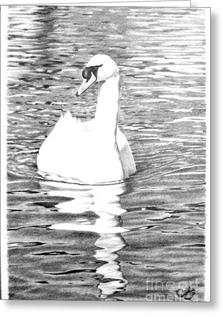 Muna Abdurrahman Greeting Cards - White Swan Greeting Card by Muna Abdurrahman
