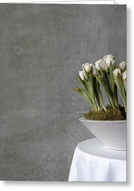 Table Cloth Greeting Cards - White tulips in bowl - gray concrete wall Greeting Card by Matthias Hauser