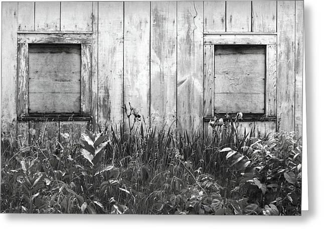 White Windows Greeting Card by Anna Villarreal Garbis