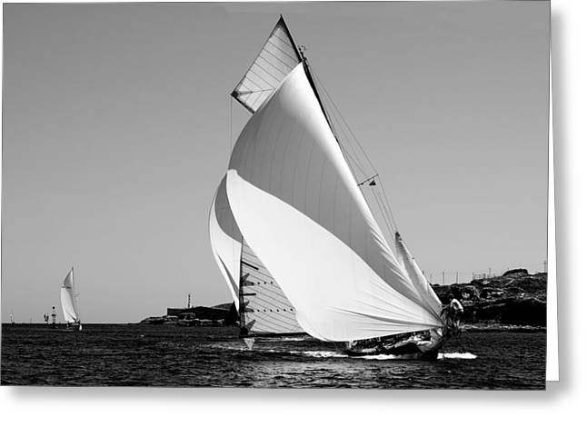 Observer Greeting Cards - white wings - A classical one mast vessel under white sails Greeting Card by Pedro Cardona