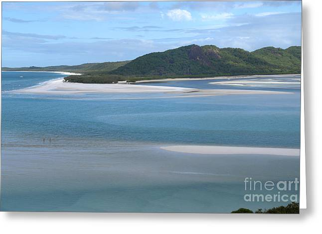 Whitsunday Greeting Cards - Whitehaven Beach  Greeting Card by Carol Ailles
