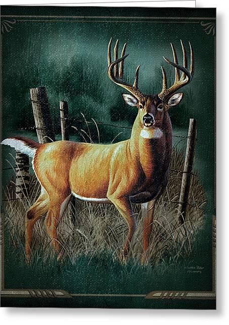 Antlers Greeting Cards - Whitetail Deer Greeting Card by JQ Licensing