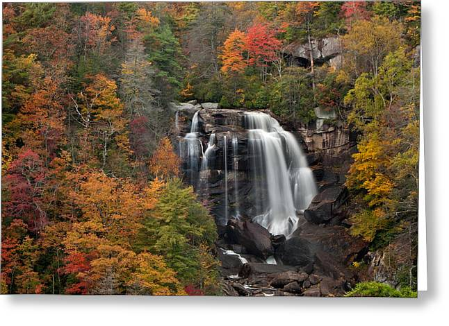 Fall Trees With Stream. Greeting Cards - Whitewater Falls 2 Greeting Card by Joye Ardyn Durham