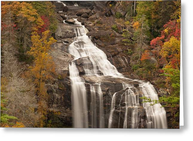 Fall Trees With Stream. Greeting Cards - Whitewater Falls 3 Greeting Card by Joye Ardyn Durham