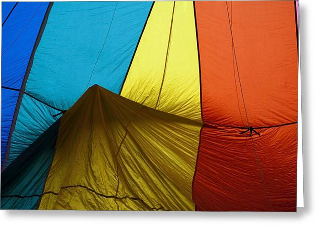 Hot Air Balloon Photographs Greeting Cards - Who landed this balloon on me Greeting Card by Mike  Dawson
