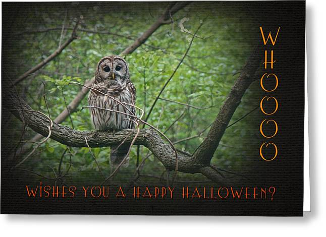 Whoooo Wishes  You A Happy Halloween - Greeting Card - Owl Greeting Card by Mother Nature