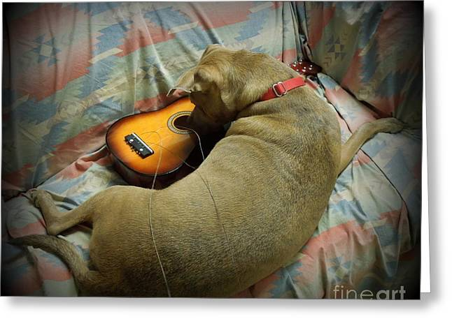 Apbt Greeting Cards - Why Wont It Play Anymore? Greeting Card by Renee Trenholm