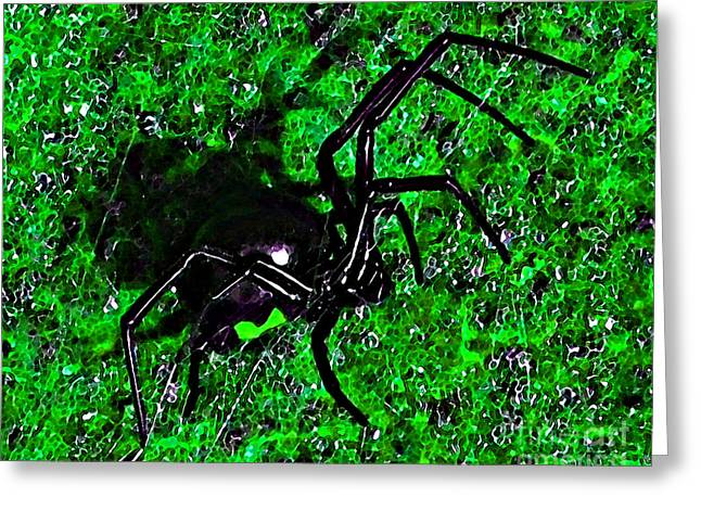 Red Hourglass Greeting Cards - Wicked Widow - Green Greeting Card by Al Powell Photography USA
