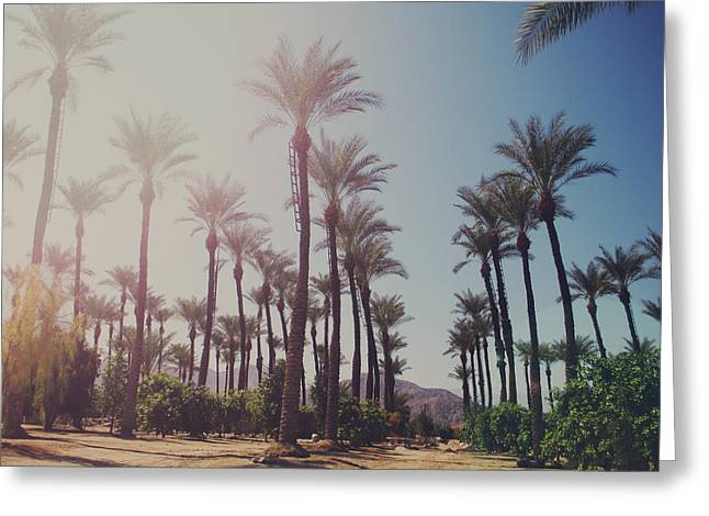 La Quinta Greeting Cards - Wide Awake Greeting Card by Laurie Search