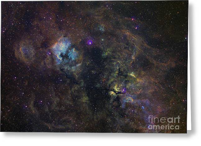Deneb Greeting Cards - Widefield Image Of Narrowband Emission Greeting Card by Filipe Alves