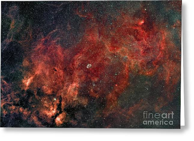 Constellations Photographs Greeting Cards - Widefield View Of He Crescent Nebula Greeting Card by Rolf Geissinger