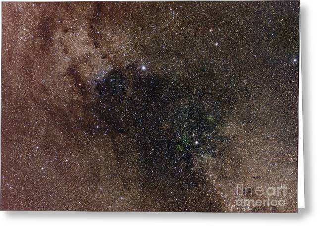 Interstellar Space Greeting Cards - Widefield View Of Star Flux In Cygnus Greeting Card by Filipe Alves
