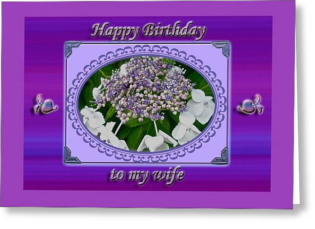 Recently Sold -  - Wife Greeting Cards - Wife Birthday Card - Lace Cap Hydrangea Greeting Card by Mother Nature