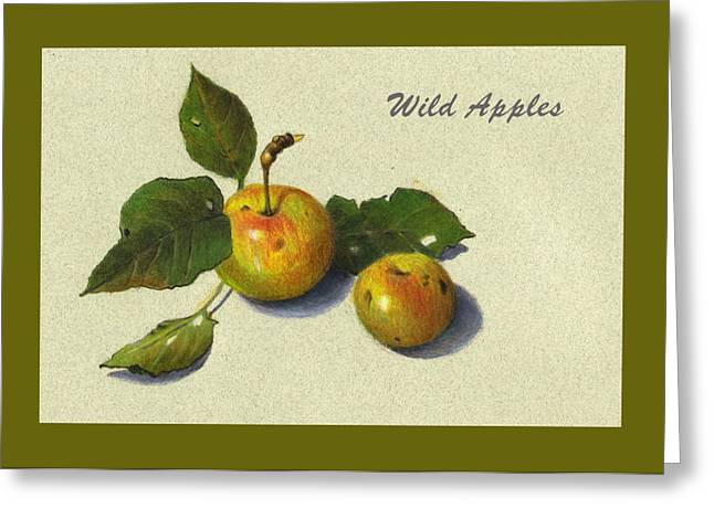 Wild Orchards Drawings Greeting Cards - Wild Apples And Leaves Greeting Card by Joyce Geleynse